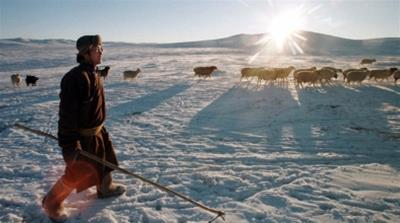 Mongolia: The nomads risking it all