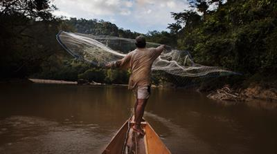 A Time to Swim: A Story of Resistance in the Forests of Borneo