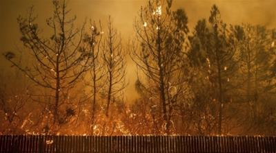 California wildfires leave several dead, force thousands to flee