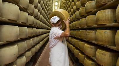 The Indians saving Italy's traditional cheese industry