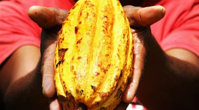 The cost of chocolate and the unjust underbelly of supply chains