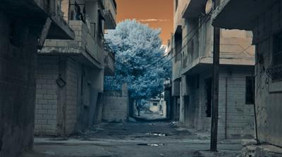 A Stranger Came to Town: Accounts of the War in Syria