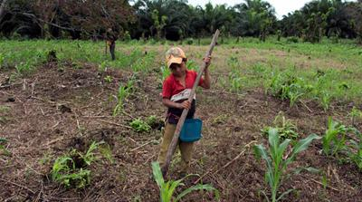 Human development of land can exacerbate climate change [Josue Decavele/Reuters]