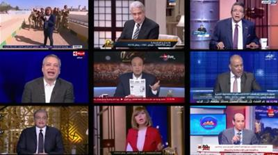 After spring came winter: The fall of the Egyptian media