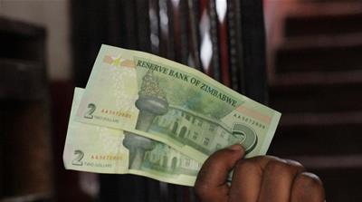 New Zimbabwean Dollar