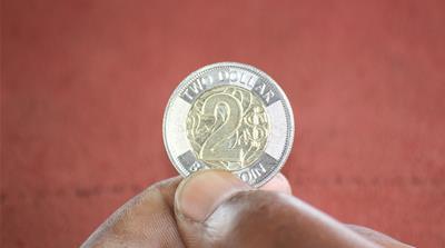 New Zimbabwean dollar coin