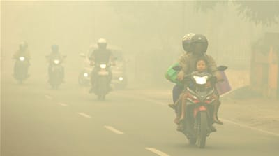Indonesia land-burning fines unpaid years after disastrous fires