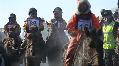 Mongolia puts the brakes on 'dangerous' winter horse racing