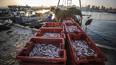 Reduction of Gaza fishing zone an 'illegal collective punishment'