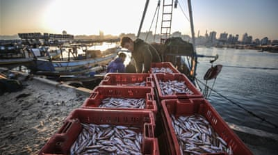 Israel lifts restriction on Gaza fishing zone as truce holds