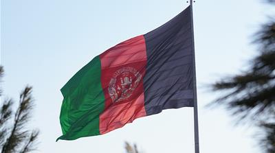 Afghan officials call for probe into sexual favours scandal
