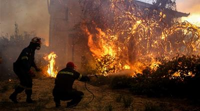 Greek island of Evia torched by wildfire