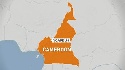 UN: 14 children among at least 22 dead in Cameroon massacre