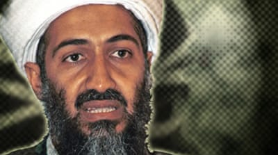 French 'had bin Laden in sights'