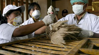 Jakarta withholds bird flu samples