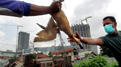 Indonesia bird flu move criticised