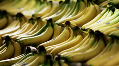 US accuses EU over bananas policy