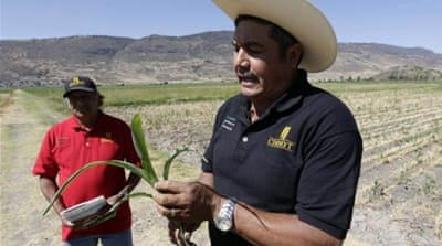 The Mexican countryside has suffered under the free trade agreement with the US [Reuters]