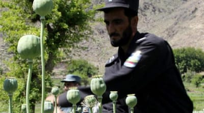 Afghanistan's opium problem will keep growing