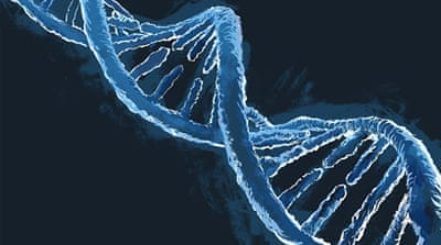 Science and security of DNA testing