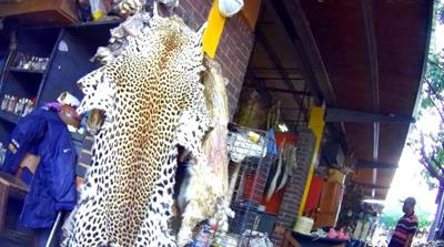 Africa: Alarm as parts of endangered animals sold openly