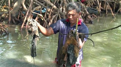 Indonesian plastic waste threatens fish stocks