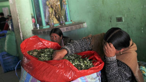 Snow of the Andes: Bolivia's Coca Dilemma