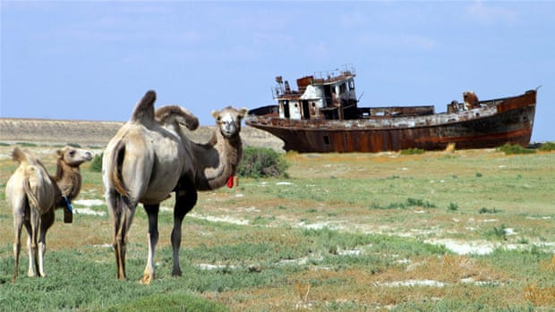 Rusty shipwrecks on the Aral Sea where the desert has crept in to replace receding waters [AFP/Getty Images]