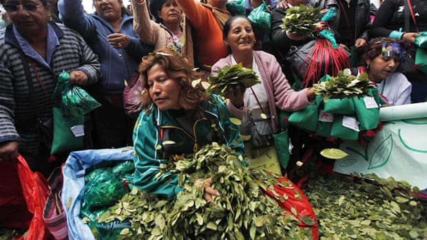 Bolivia stands up to US with coca-control policy