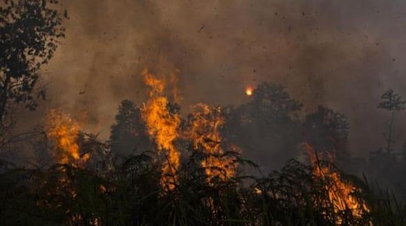 Indonesia S Burning Question Humanitarian Crises Al Jazeera