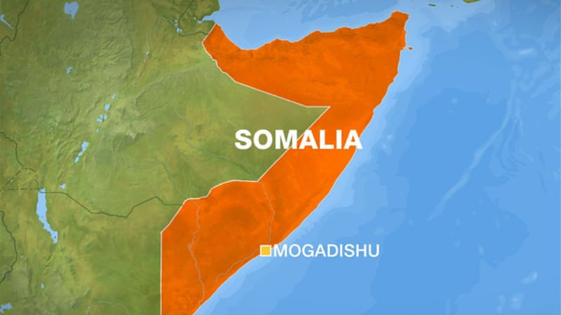 Somalia borders Ethiopia, Kenya, and Djibouti to its west, and the Indian Ocean to its north and east