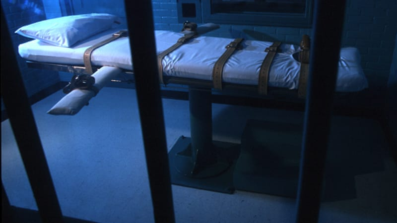 an analysis of the flaws of the death penalty in the united states Death penalty is not a deterrent, abolish it  like in the united states, the death penalty in india is  sympathy in spite of flaws in.
