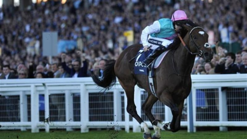 Frankel claimed his 14th race win out of 14 at the Queen Elizabeth II Stakes in Ascot [AFP]
