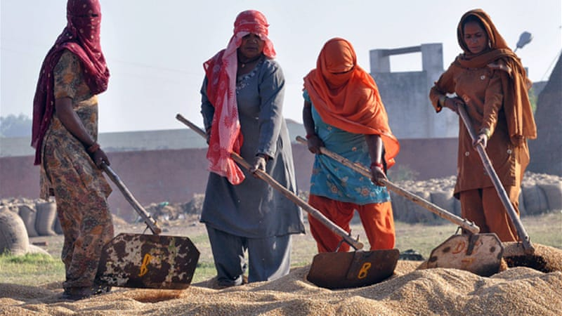Women provide about one-third of India's agricultural labour but own just 11 per cent of the land [EPA]