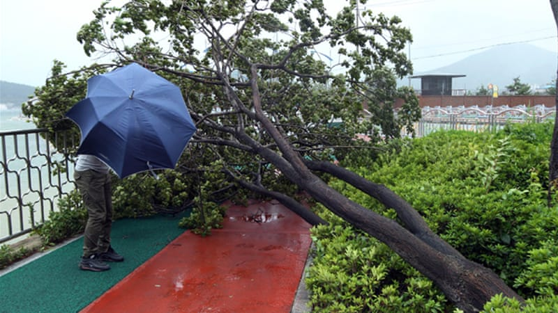 Chinese fishermen killed in typhoon