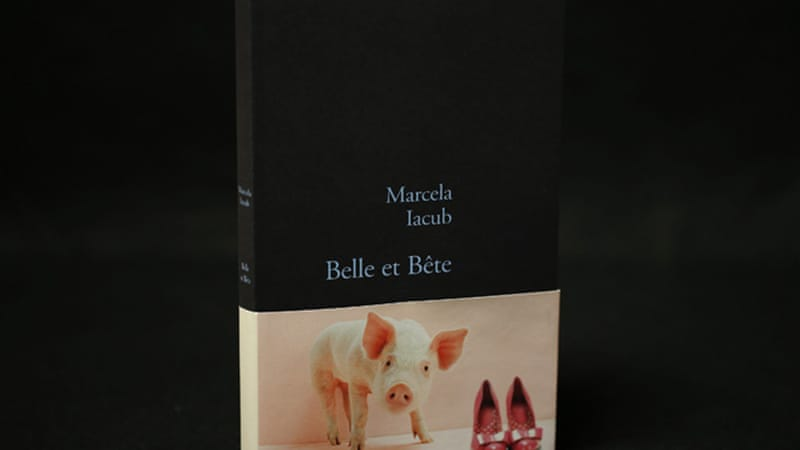 The new book Belle et Bete (Beauty and Beast) details Iacub's seven-month affair with Strauss-Kahn [Reuters]
