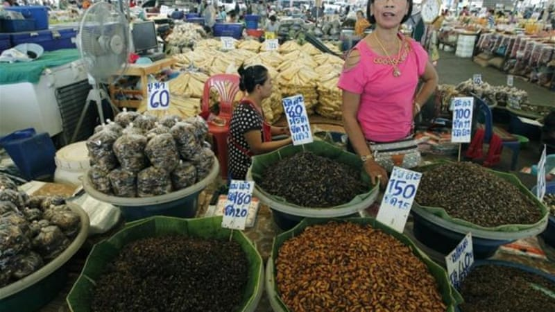 In some countries, like Thailand, demand for edible insects increases as living standards improve [EPA]