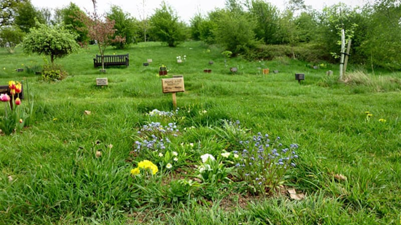 Green goodbyes: The growth of eco-burials | US & Canada | Al