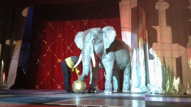 zaico circus guadalajara weather