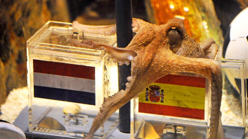 At the 2010 event, the Germans used Paul the octopus to forecast the results [EPA]