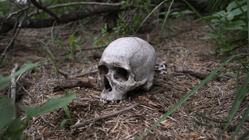 Mass migrant graves unearthed in Texas | News | Al Jazeera