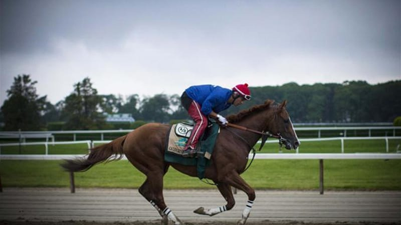 California Chrome is the winner of the 2014 Kentucky Derby and Preakness Stakes [Reuters]