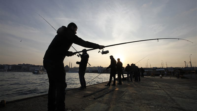 Many fish species have been lost as a result of polluted water seeping into the sea near Istanbul [Reuters]