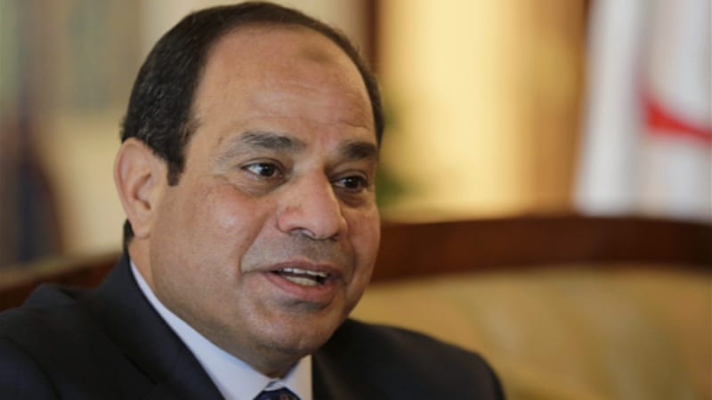 Sisi wants activists to support government efforts to alleviate poverty and improve healthcare [Reuters/L. Larbi]