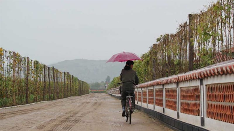 Woman with umbrella on the Tongbon Cooperative Farm in North Korea [Getty]