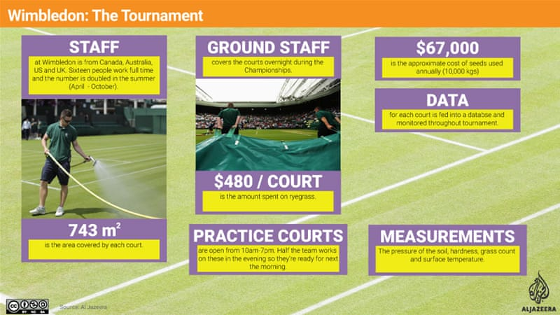 How the grass and the courts are taken care of [Al Jazeera]