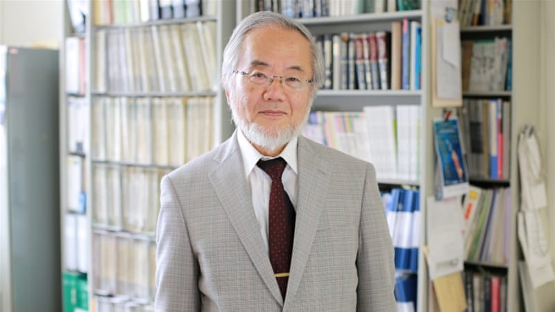 Ohsumi is currently a professor at the Tokyo Institute of Technology [Reuters]