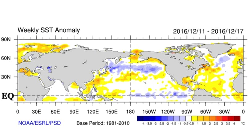 Sea surface temperatures over the Pacific indicating La Nina [--]