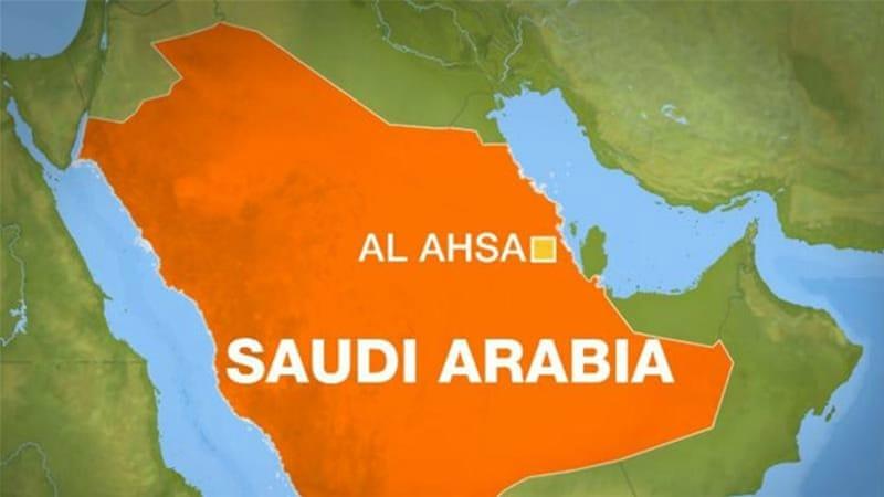 Resultado de imagem para al-ahsa