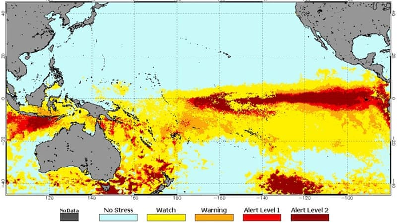 Coral reef bleaching risk this week, in the Pacific ocean and Coral Sea [NOAA Coral Reef Watch]-